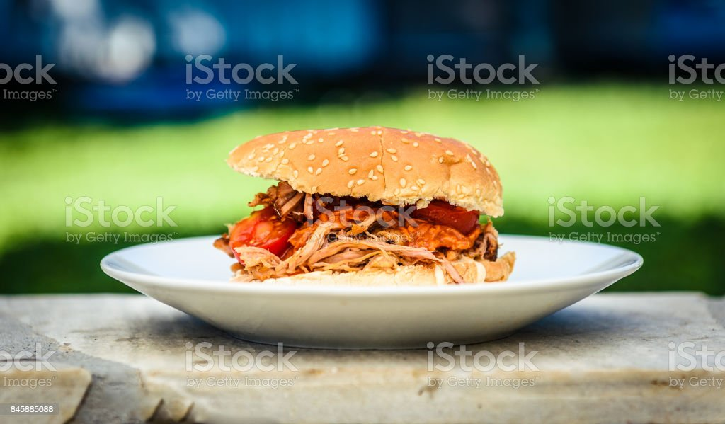 Pulled pork sandwich burger is served with nature background. stock photo