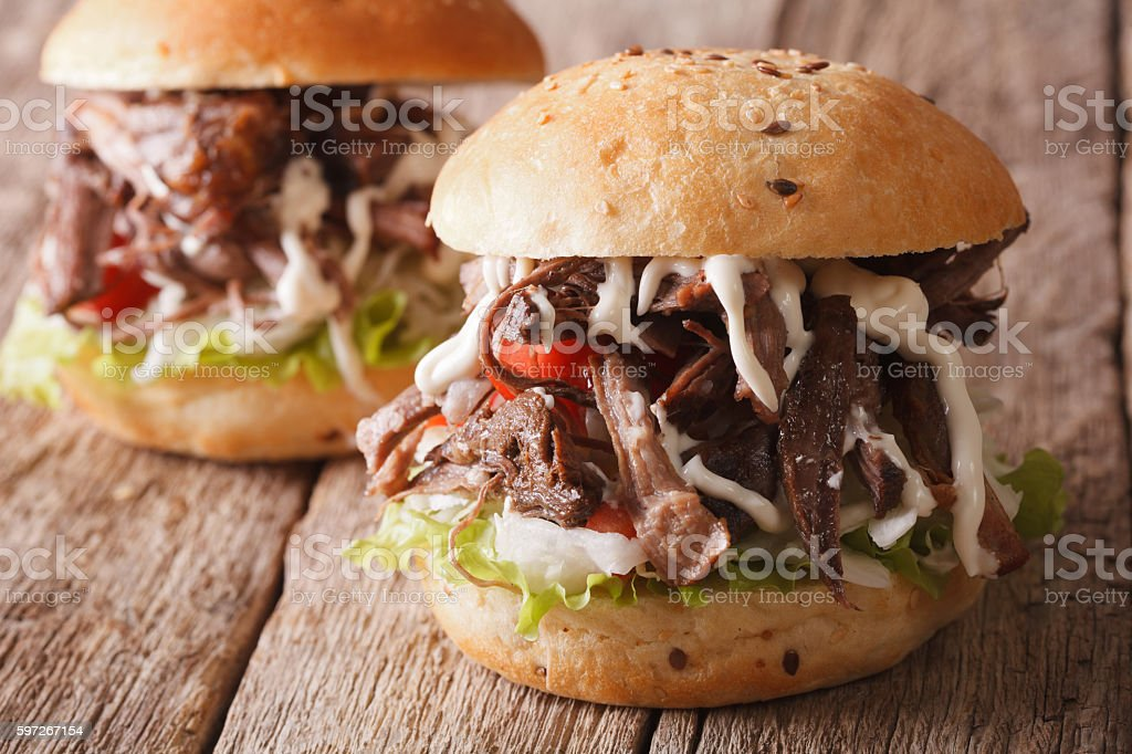Pulled pork sandwich with vegetables and sauce close-up royalty-free stock photo