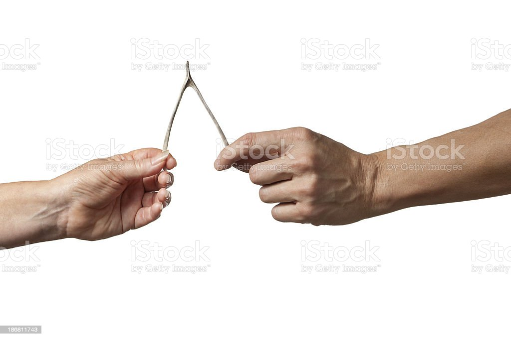 Pulling on Wishbone Contest royalty-free stock photo