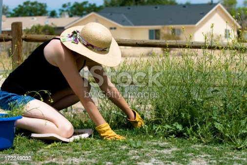 A young woman pulls large overgrown weeds