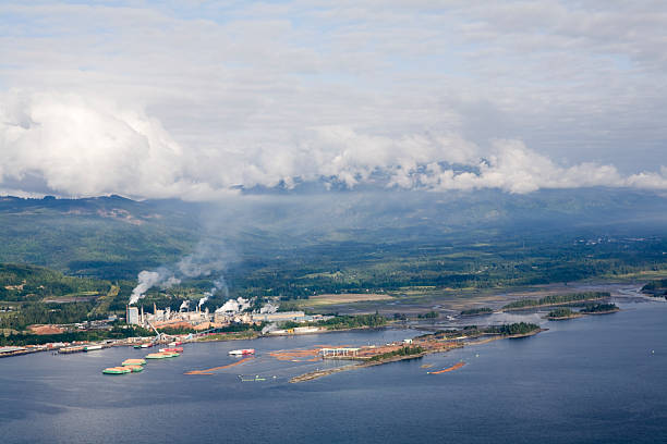 Pulp Mill - Aerial View stock photo