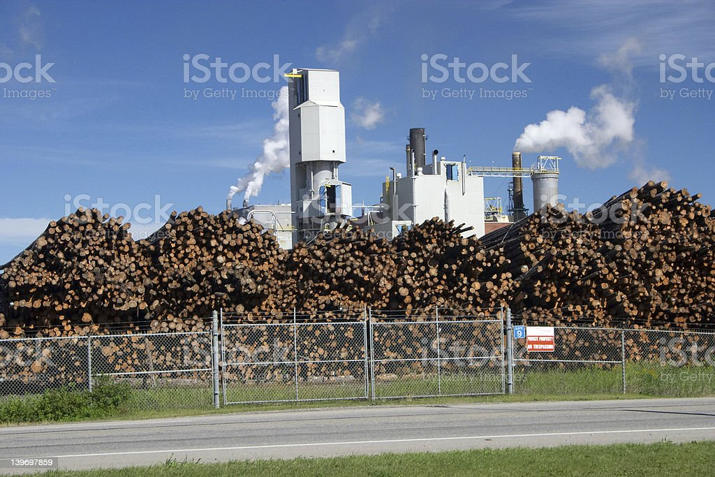 Pulp Mill Stockpile royalty-free stock photo