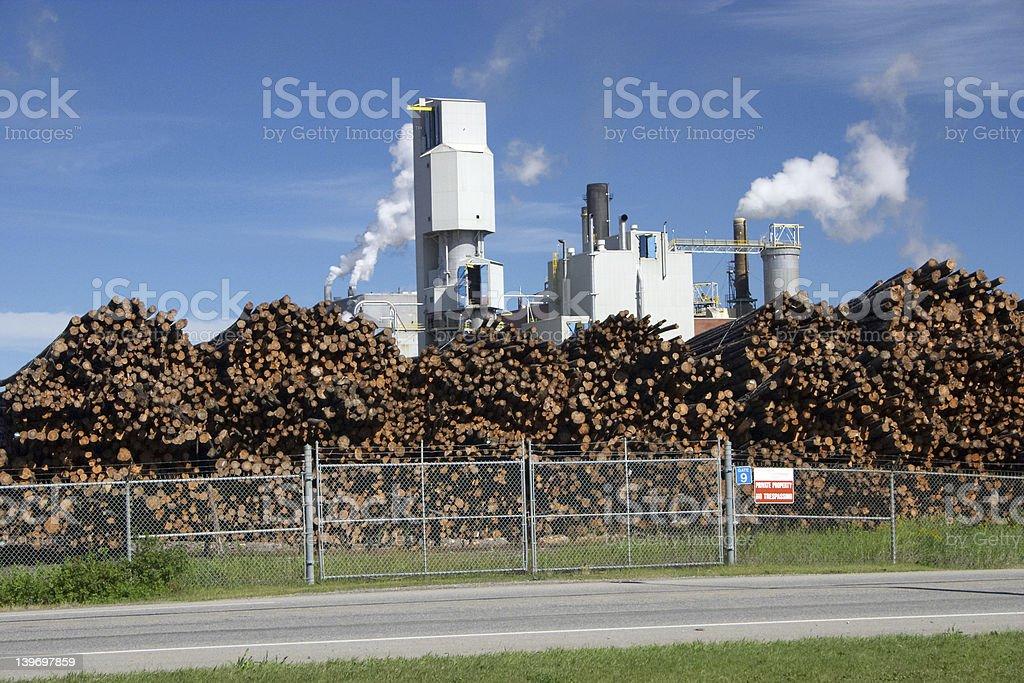 Pulp Mill Stockpile stock photo