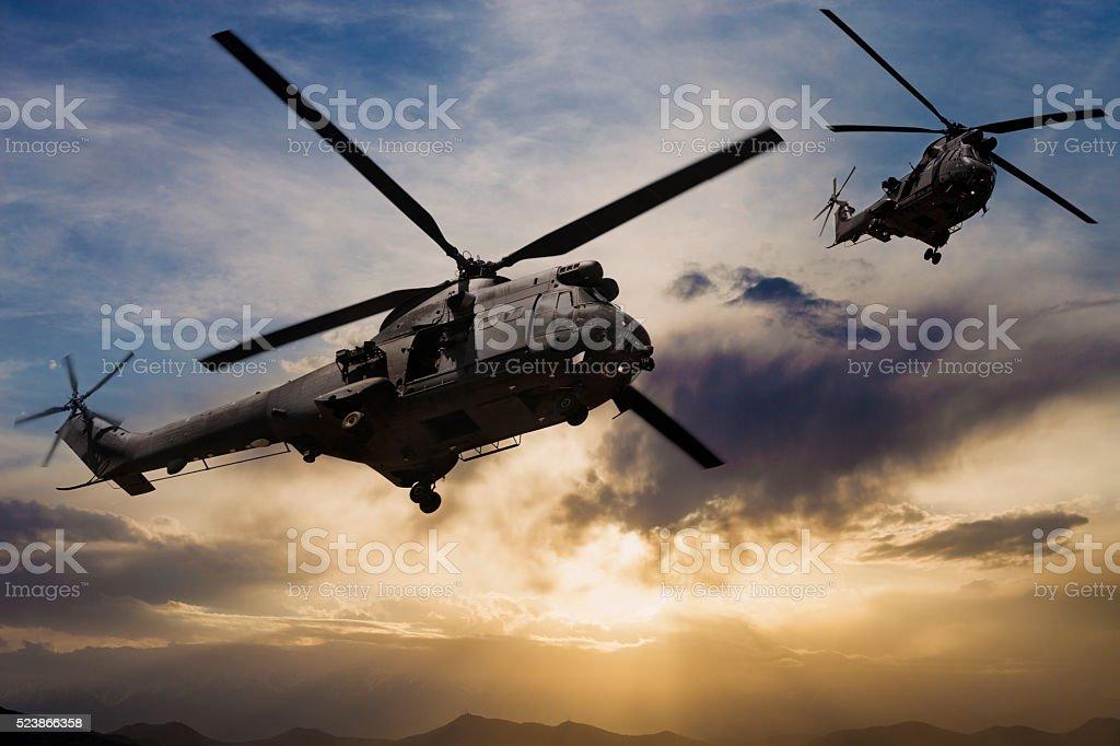 Военных вертолетов «Пума» стоковое фото
