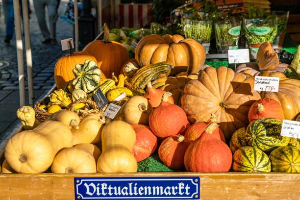 pumkink für den verkauf am viktualienmarkt in münchen - kürbis kaufen stock-fotos und bilder