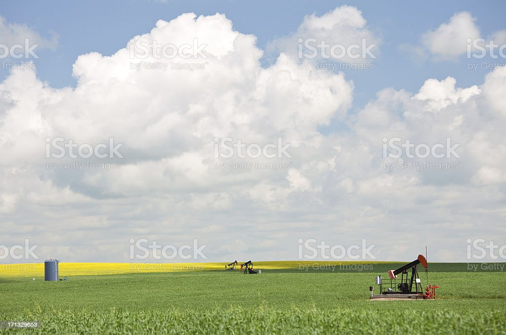 pumpjack in a large wheat field royalty-free stock photo