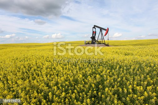 A pumpjack in a canola field. Alberta, Canada. The oil and gas industry is a major player in Alberta's economy. This oil rig is in an oil field near High River. Fuel and power generation as well as pollution and the environment are other themes for this vibrant image.