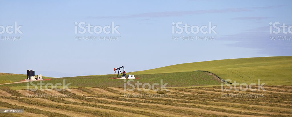 Pumpjack in Wheat Field royalty-free stock photo