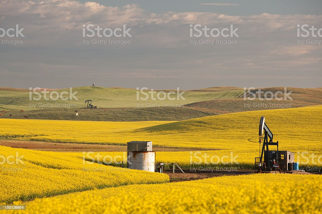 Pumpjacks on the Prairie royalty-free stock photo