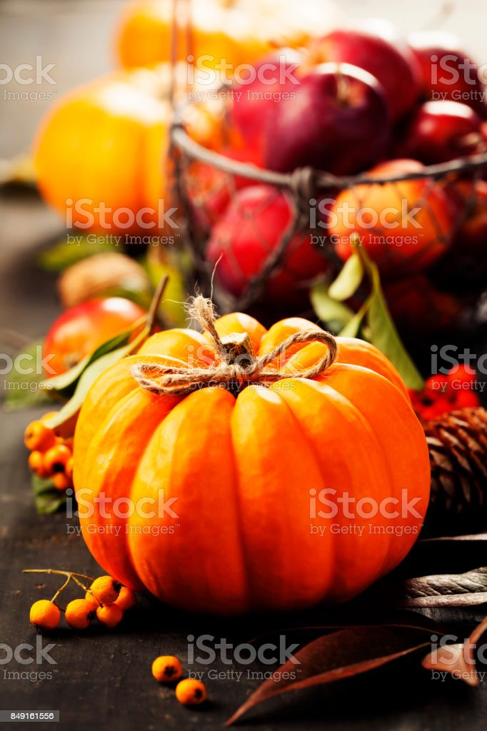 Pumpkin and apples stock photo