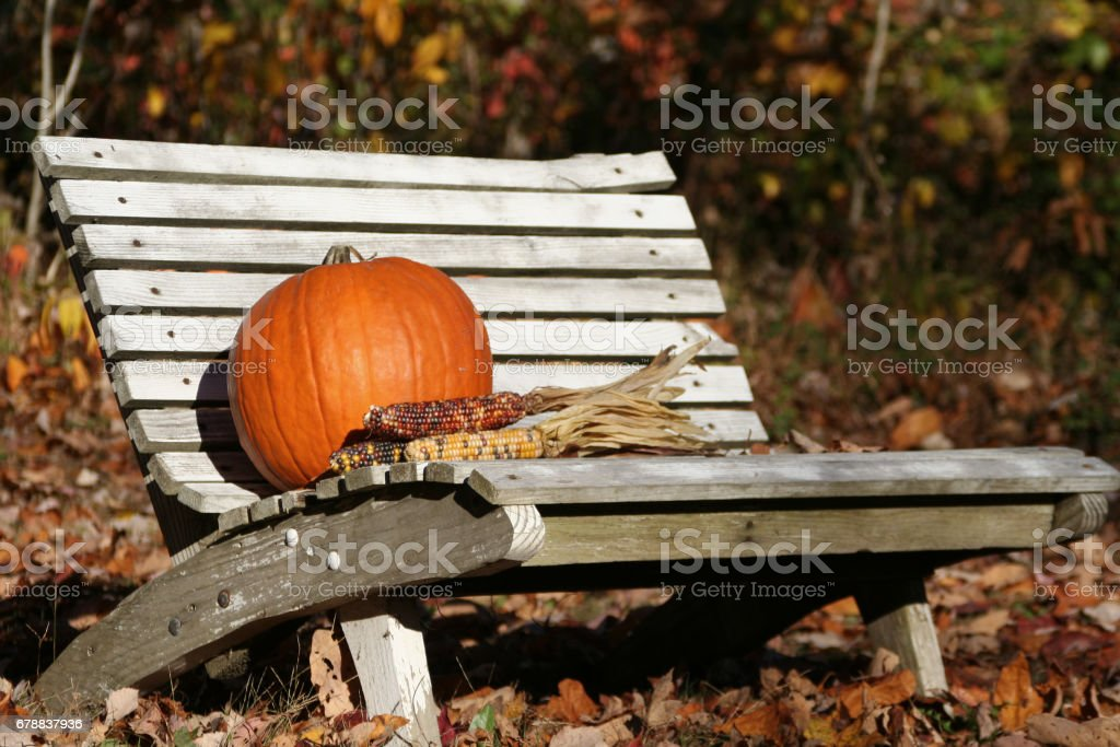 Pumpkin and Indian Corn on Old Bench photo libre de droits
