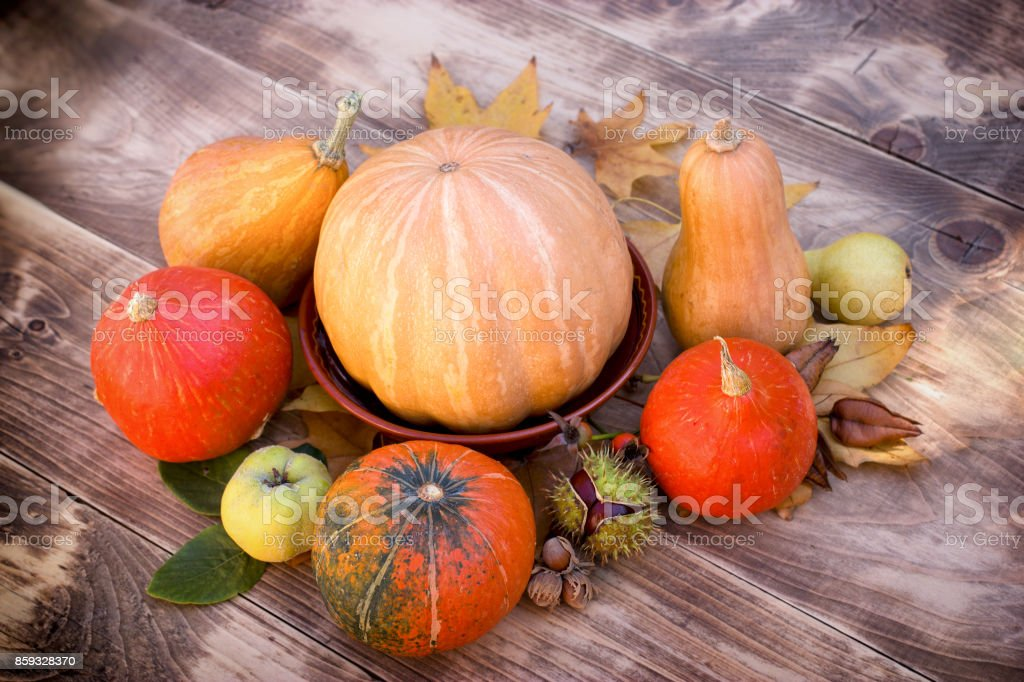 Pumpkin and squash - harvest on table, seasonal fruit and vegetable stock photo