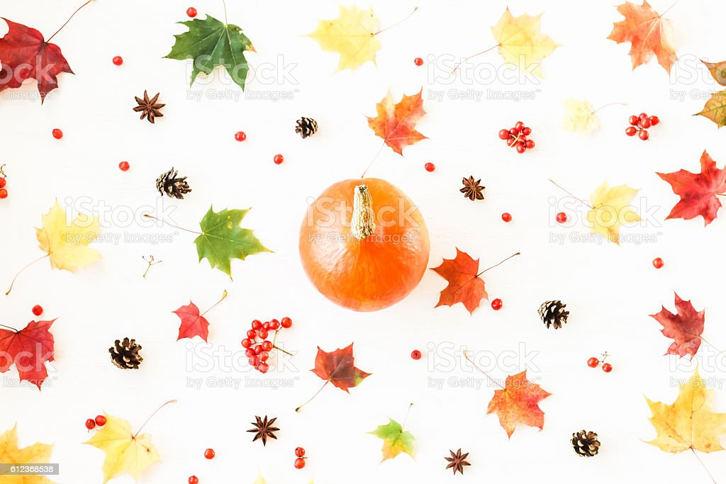 Pumpkin, anise star, pine cones and autumn leaves. Thanksgiving day stock photo