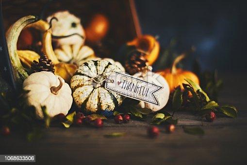 Pumpkin assortment still life and thankful message