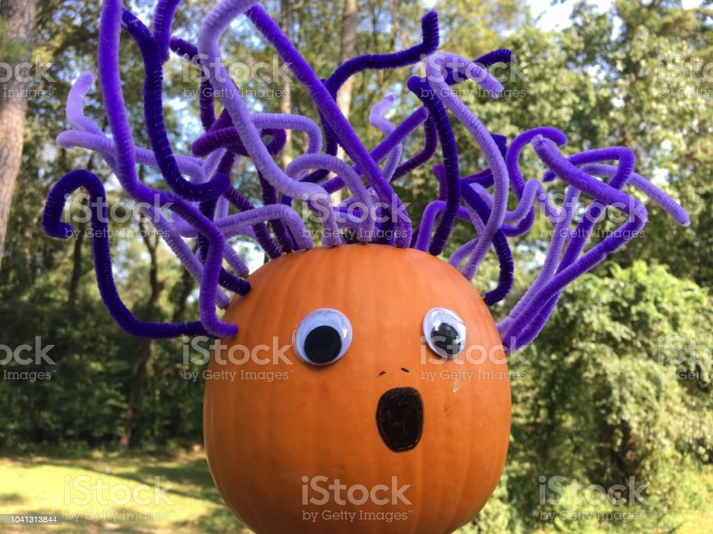 Conceptual image of bad hair day using pumpkin and purple pipe...