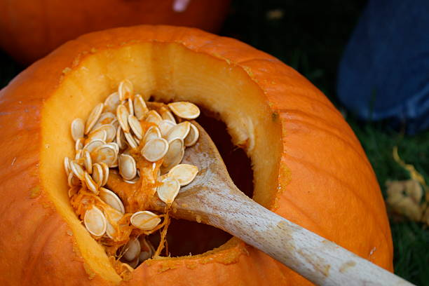 Pumpkin Carving Pumpkin being hollowed out to make a Jack o' lantern.  carving craft product stock pictures, royalty-free photos & images