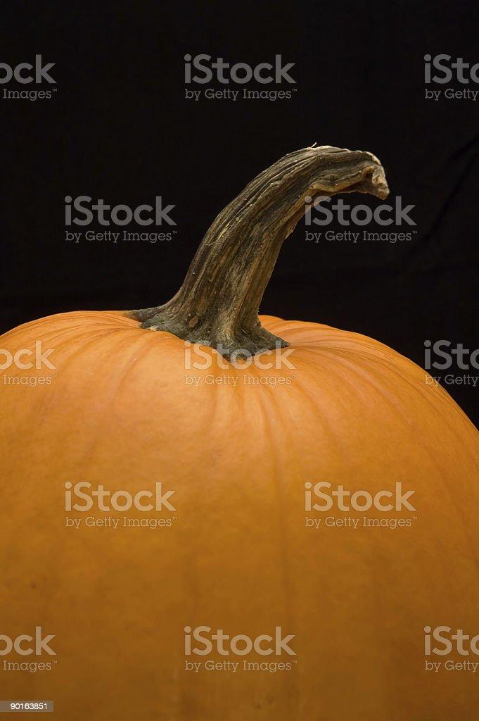 Pumpkin Closeup on Black Background - Vertical stock photo