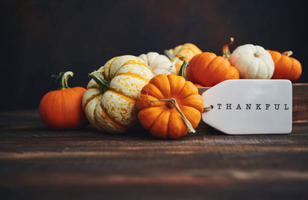 Pumpkin Collection with Thankful Message for Thanksgiving. Fall Background stock photo