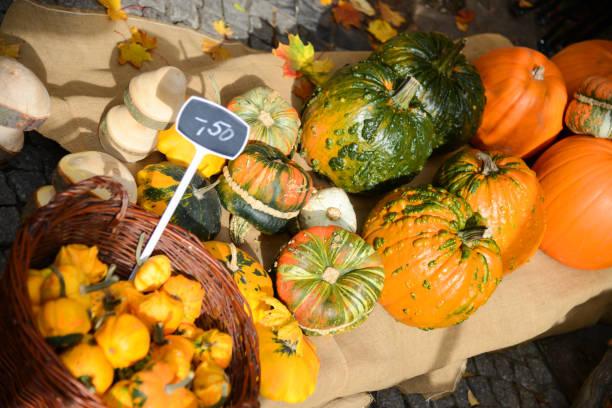 kürbis für den verkauf auf dem markt, deutschland - kürbis kaufen stock-fotos und bilder