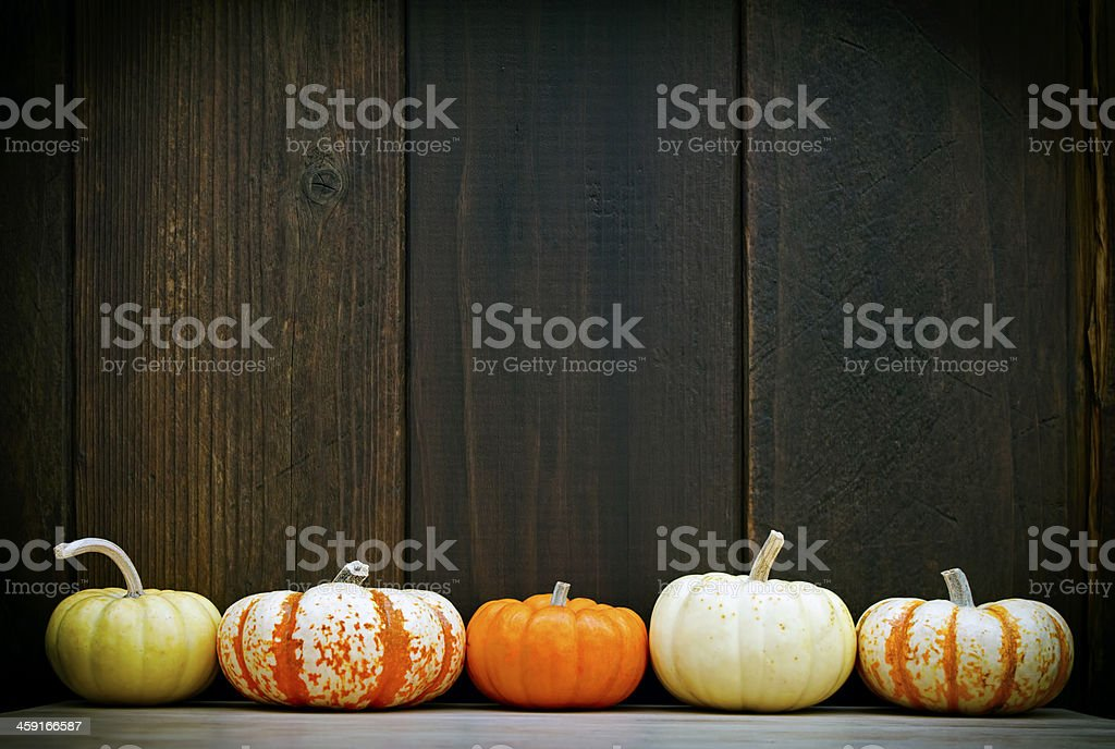 Pumpkin frame stock photo