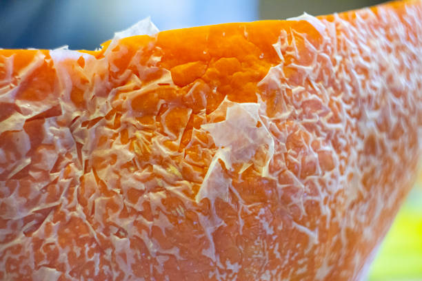 pumpkin frost ice gardening freezer winter patterns refrigerator nature vegetables stock photo