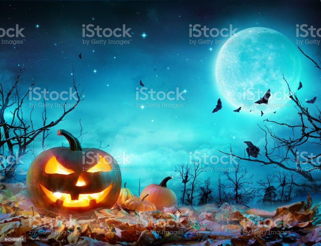 Que brilla en la luz de la luna en el bosque Spooky - escena Halloween calabaza - foto de stock