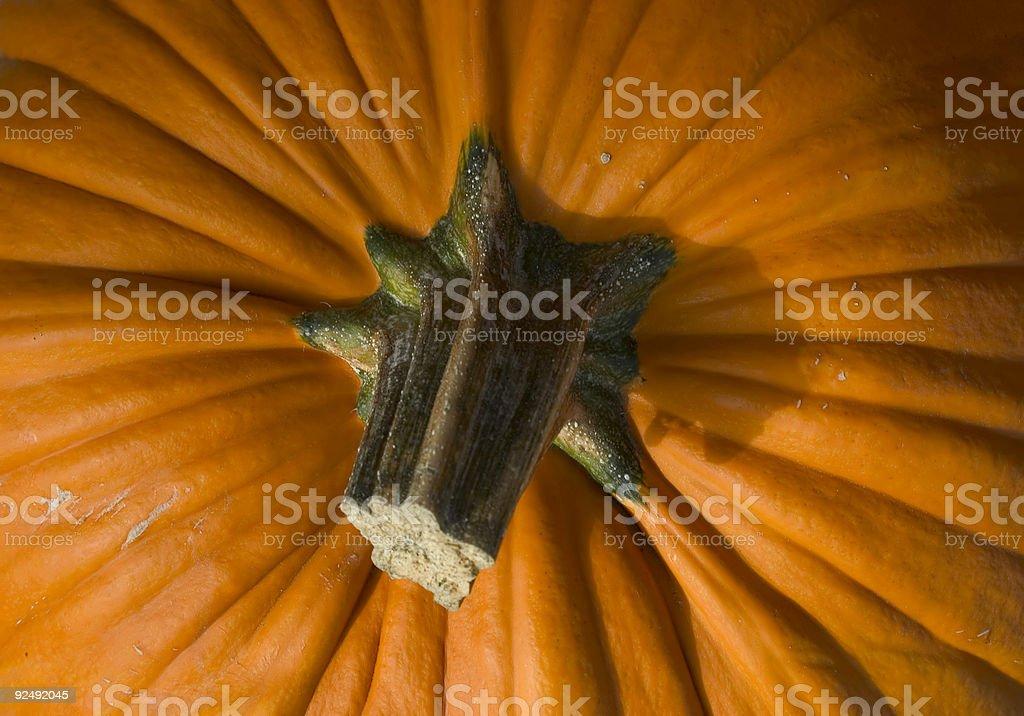 Pumpkin, Halloween royalty-free stock photo