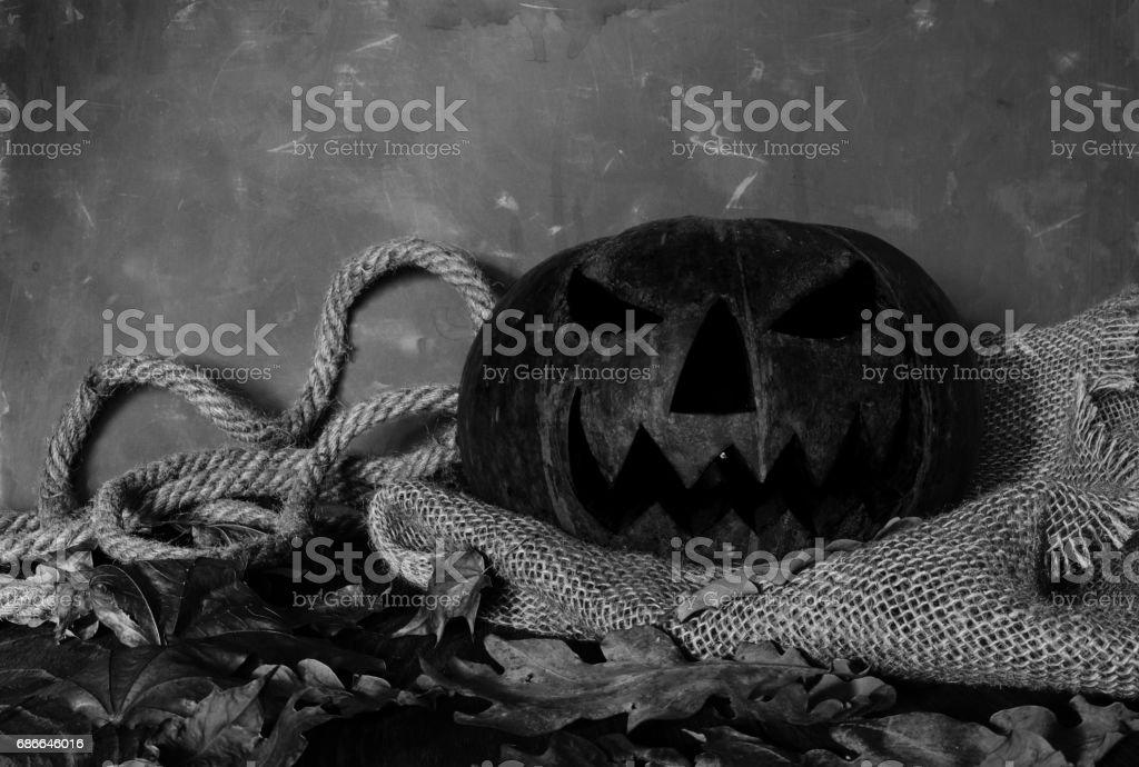 Pumpkin, Halloween symbol royalty-free stock photo