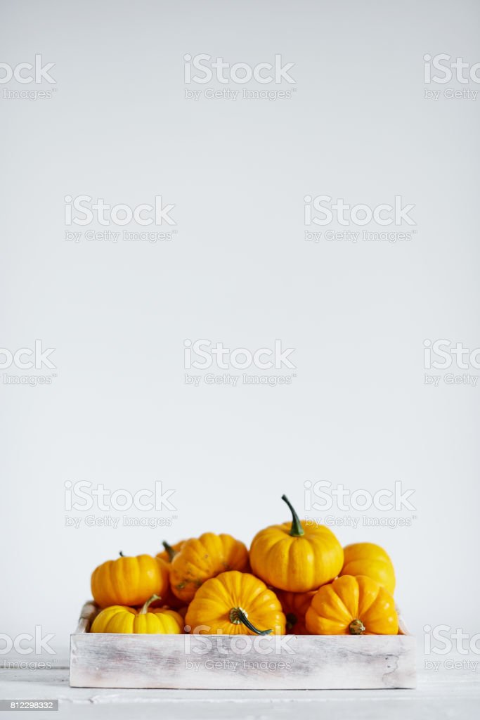 Pumpkin harvest in wooden box on white stock photo