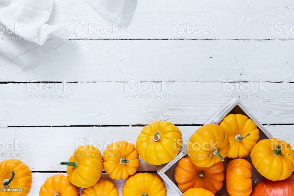 Pumpkin harvest on wooden table on white stock photo