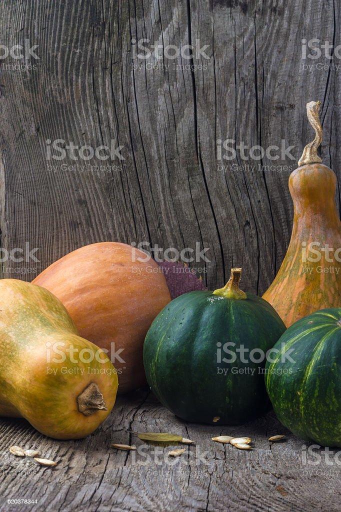 Pumpkin in a wooden box zbiór zdjęć royalty-free