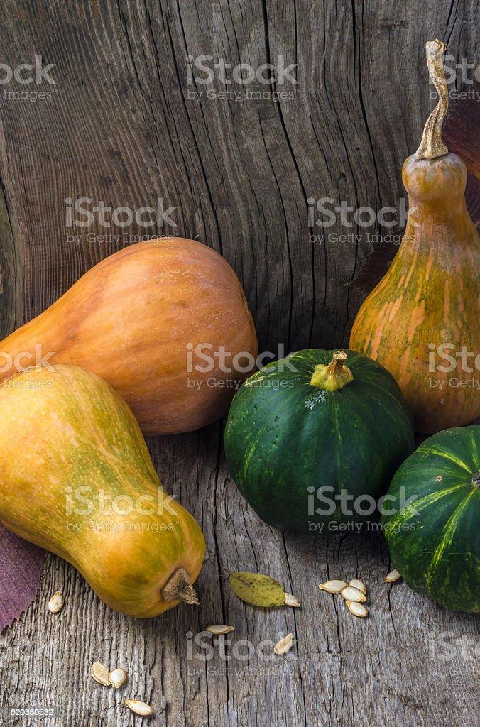 Pumpkin in a wooden box foto de stock royalty-free
