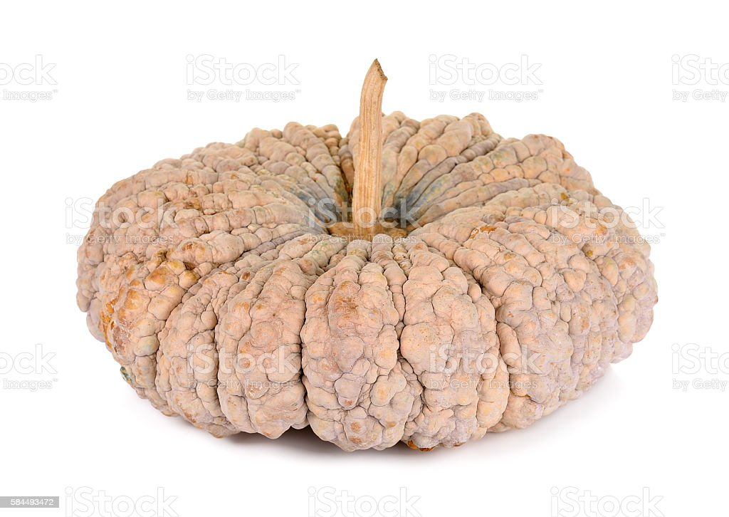 pumpkin isolated on the white background stock photo