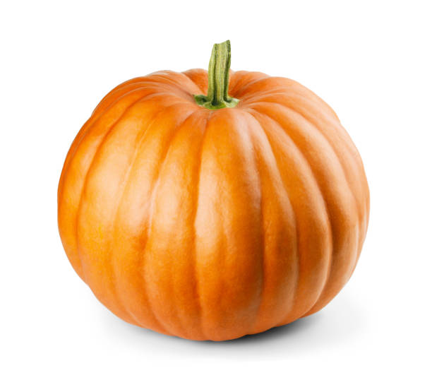 pumpkin isolated on white background - pumpkin zdjęcia i obrazy z banku zdjęć