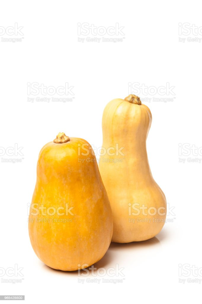 Pumpkin isolated on white background zbiór zdjęć royalty-free