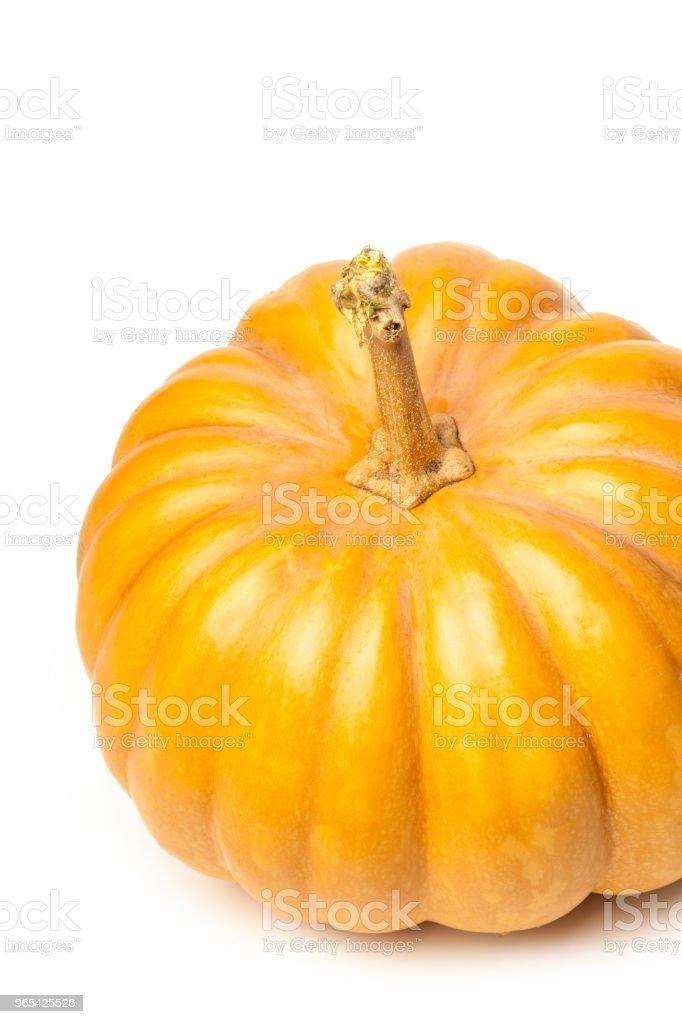 Pumpkin isolated on white background zbiór zdjęć royalty-free