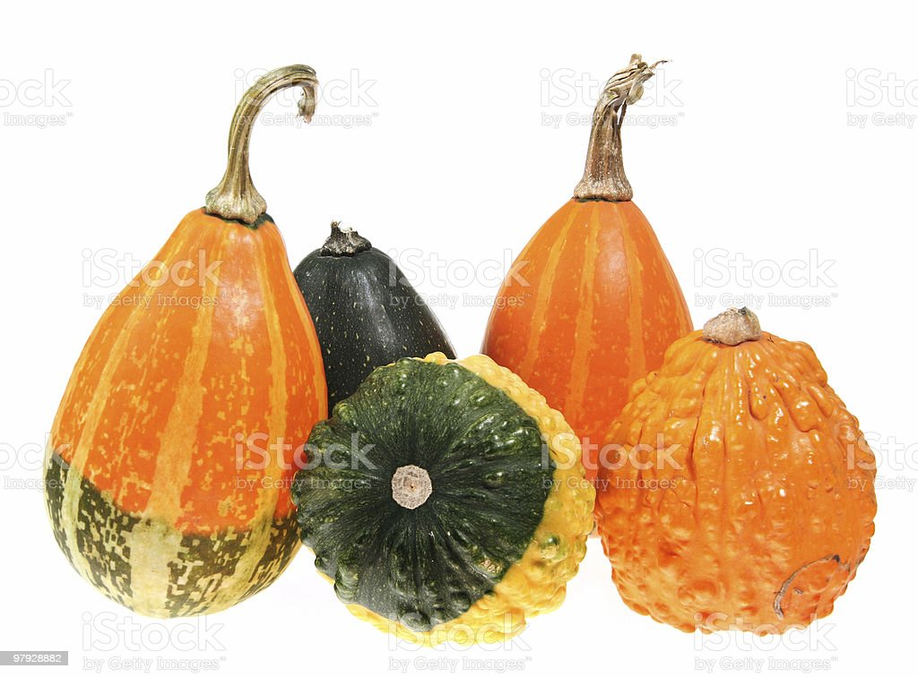 Pumpkin isolated royalty-free stock photo