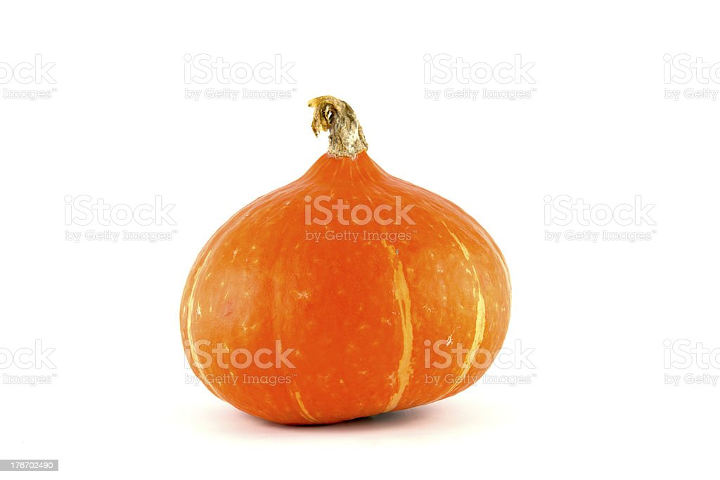 pumpkin Japan. – Foto