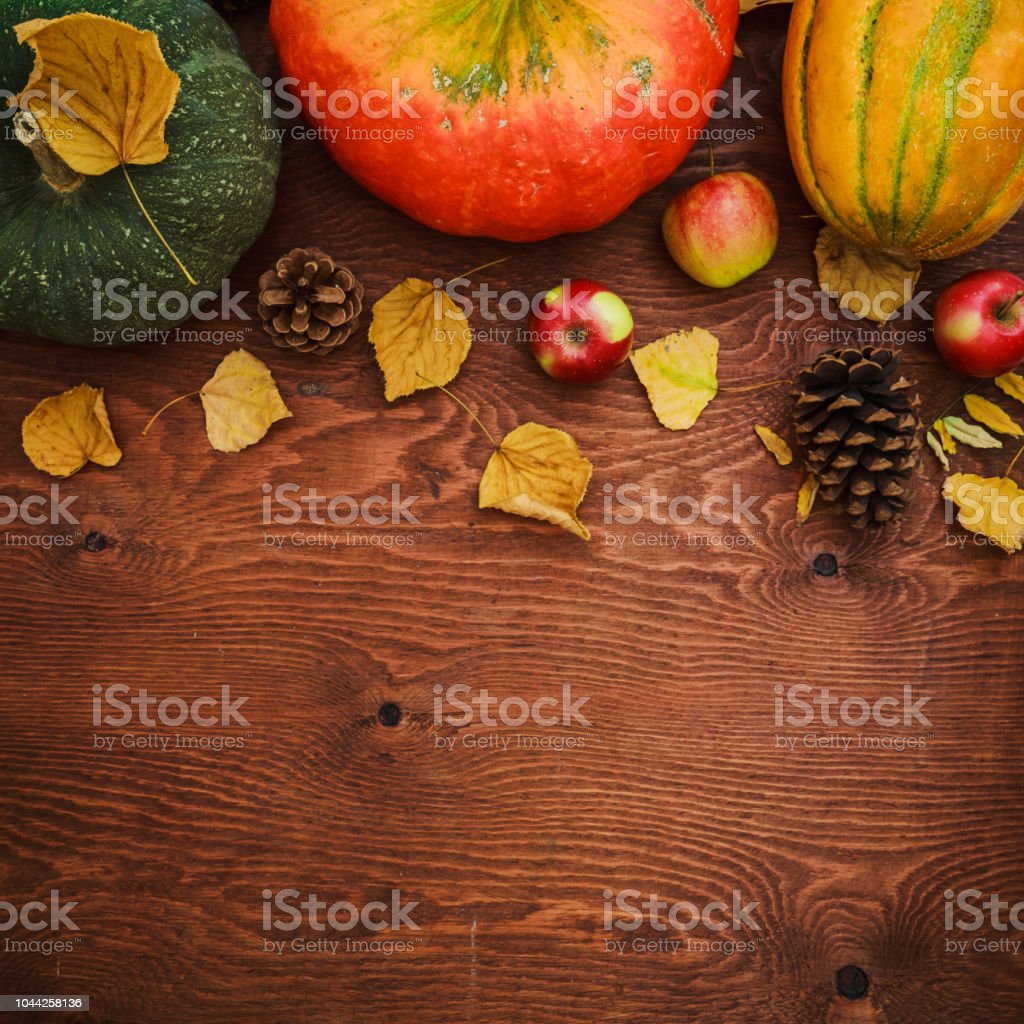 Pumpkin, melon and apple  fruit on wooden background. Thanksgiving day, autumn background. Flat lay, top view stock photo