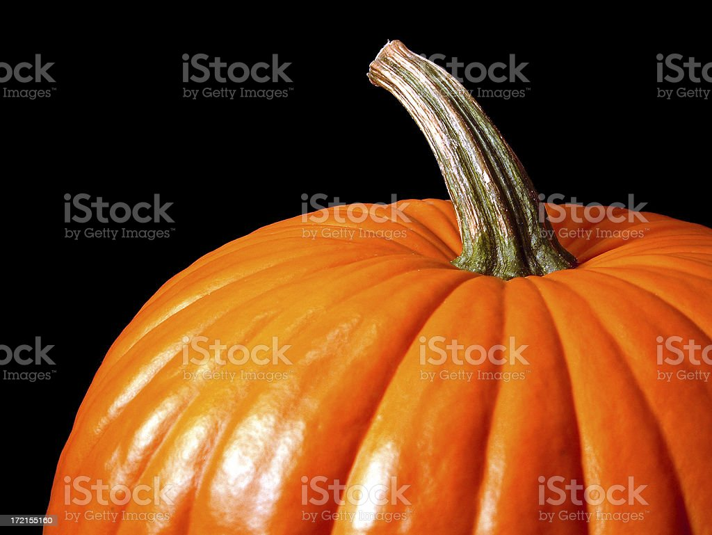 Pumpkin on Black stock photo