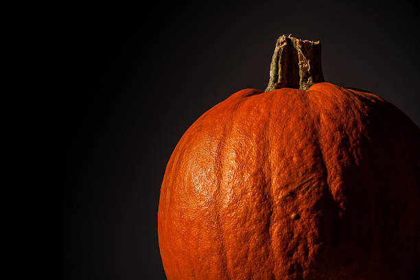 Pumpkin on Black stock photo