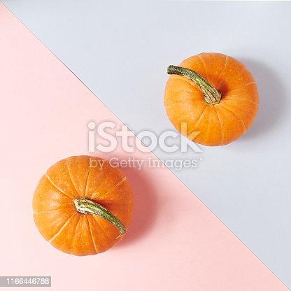 Pumpkin on Dual Color Pastel Background. Autumn Concep Layout. Top View. Copy Space