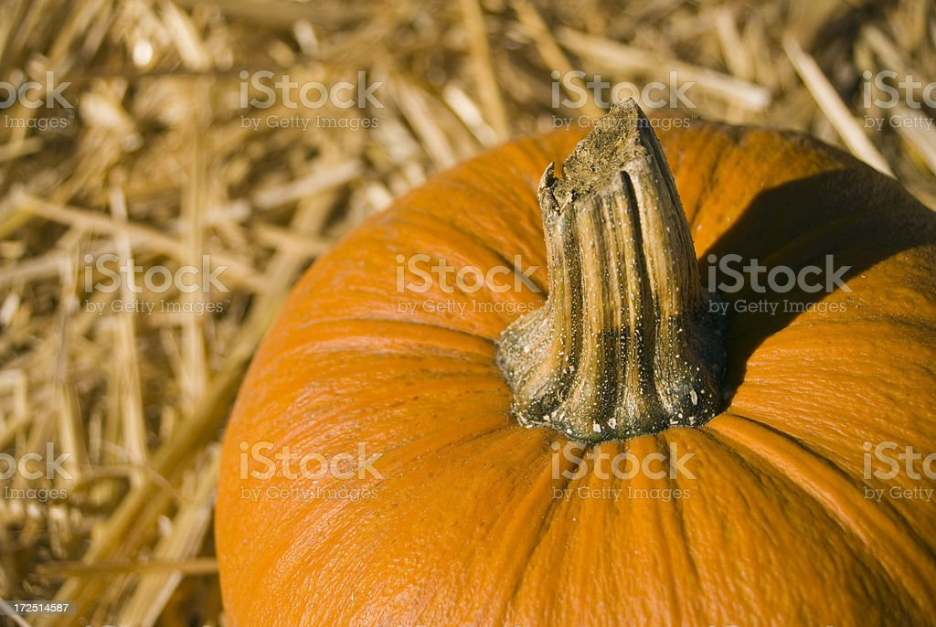 Pumpkin on hay royalty-free stock photo