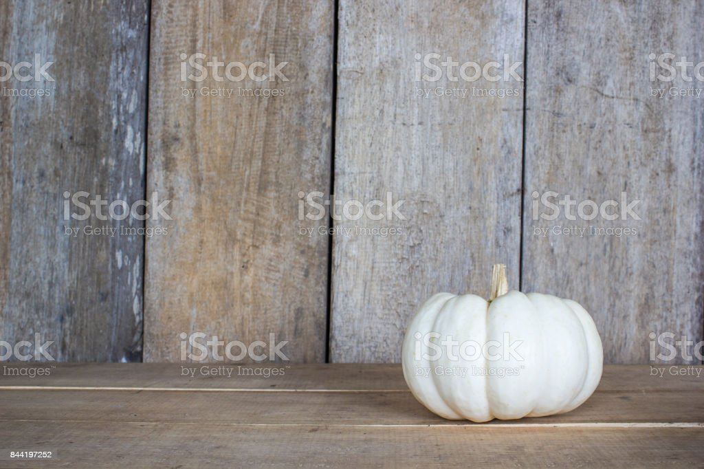 Pumpkin on wood table and wood background with copy space. stock photo