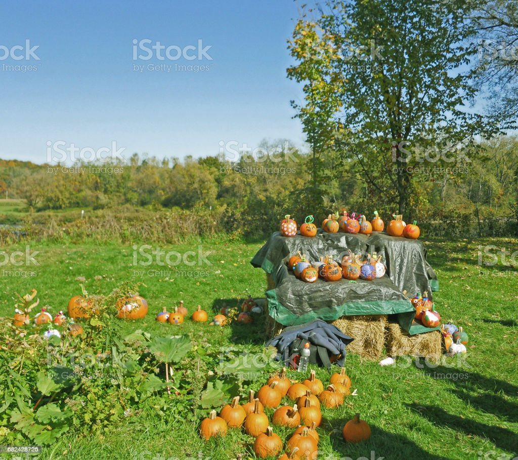 Pumpkin painting Autumn New York royalty-free stock photo