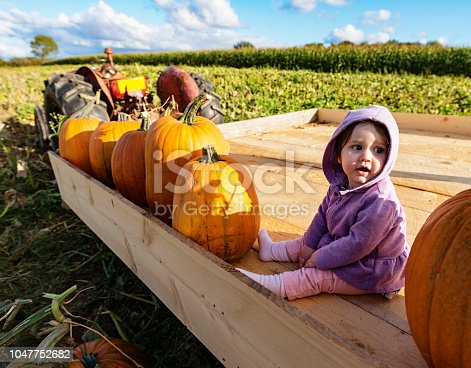 A nine month old baby girl in a pumpkin patch.