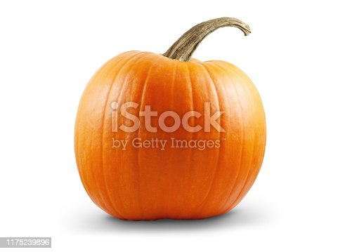 Pumpkin isolated on white background with shadow and subtle reflection