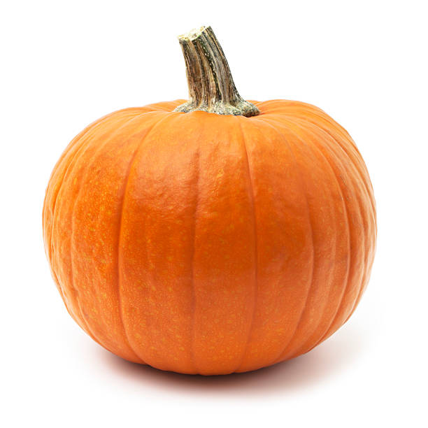 Pumpkin Pumpkin on white background pumpkin stock pictures, royalty-free photos & images