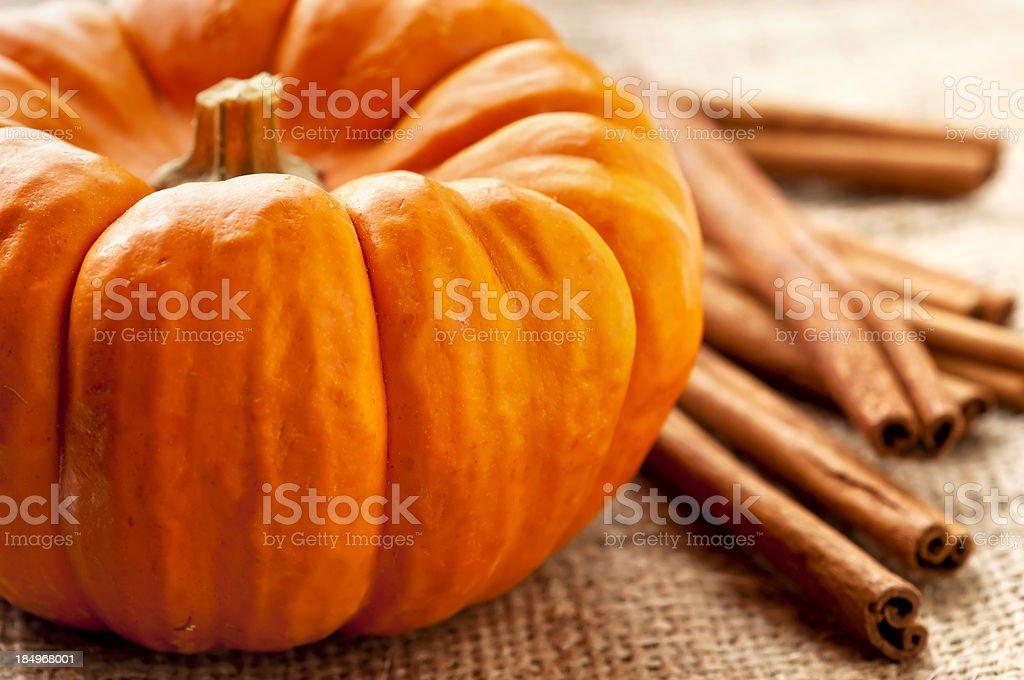 Pumpkin royalty-free stock photo