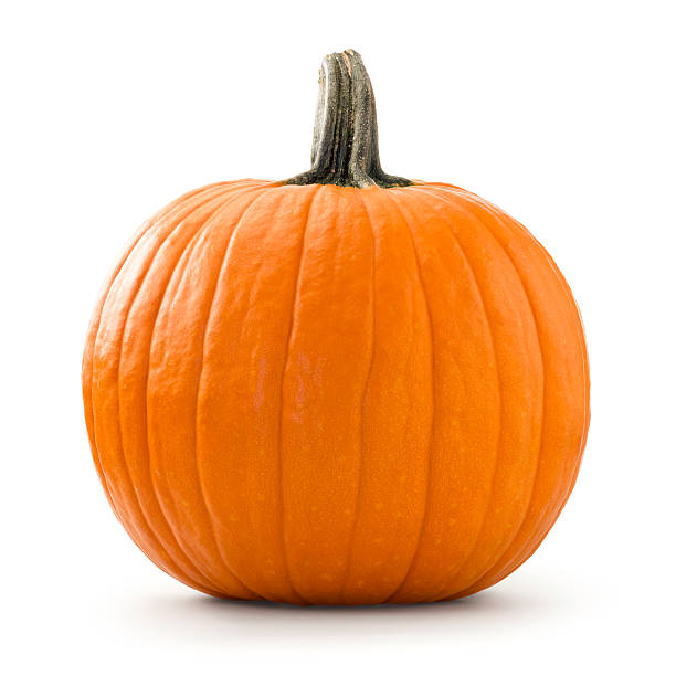 Pumpkin Large pumpkin photographed over white background. pumpkin stock pictures, royalty-free photos & images